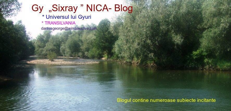 "Gy  ""Sixray"" NICA-Blog"