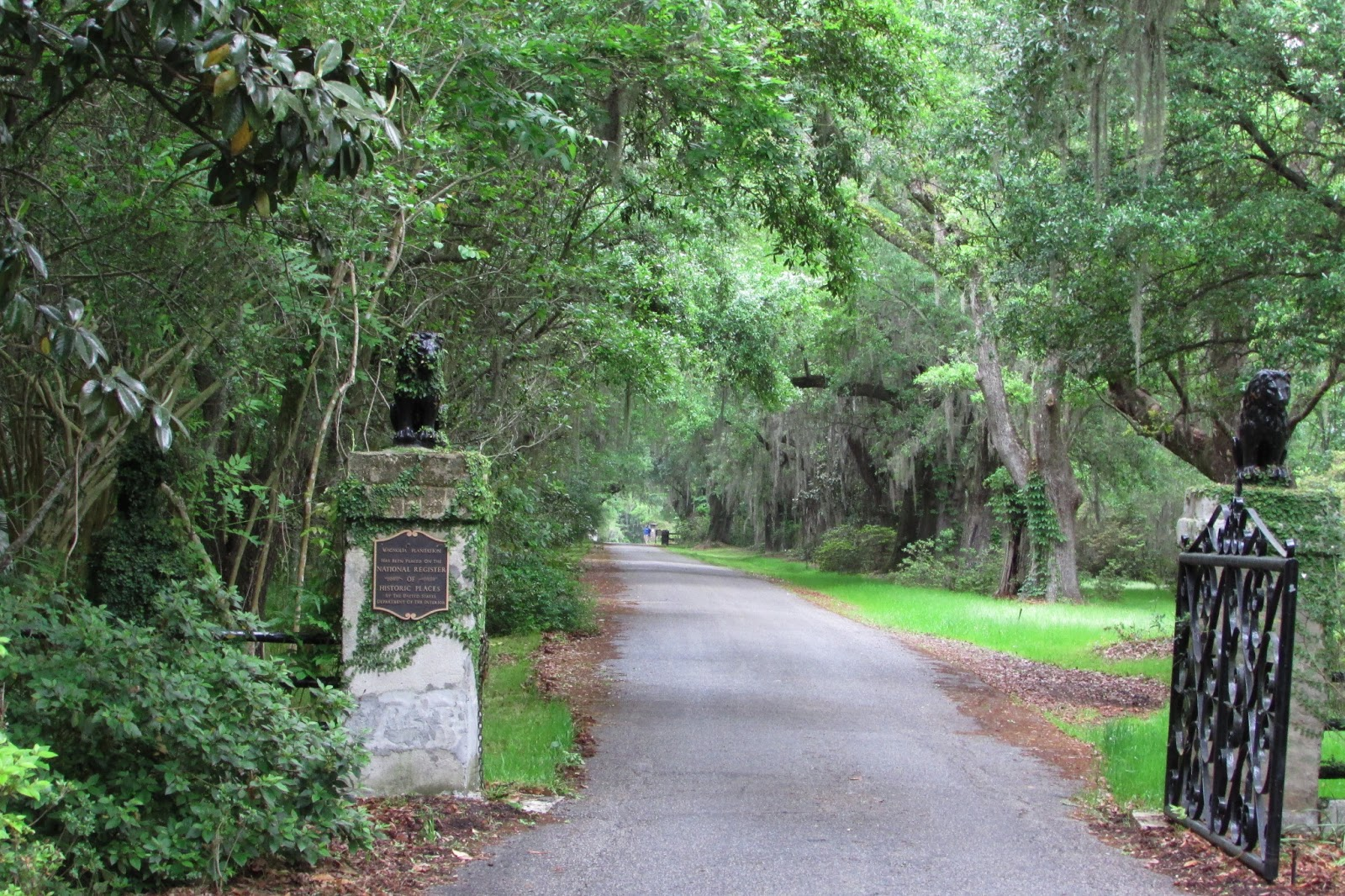 One Designing Woman The Magnolia Plantation And Gardens
