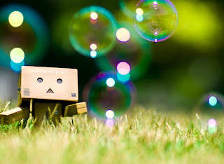 Danbo Wallpaper hd fun