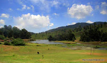 Virtual tour To Ooty