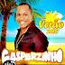 CD Gasparzinho - Verão Pegação - 2015