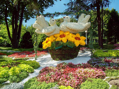 Выставка цветов к Дню Незалежности 2011 года