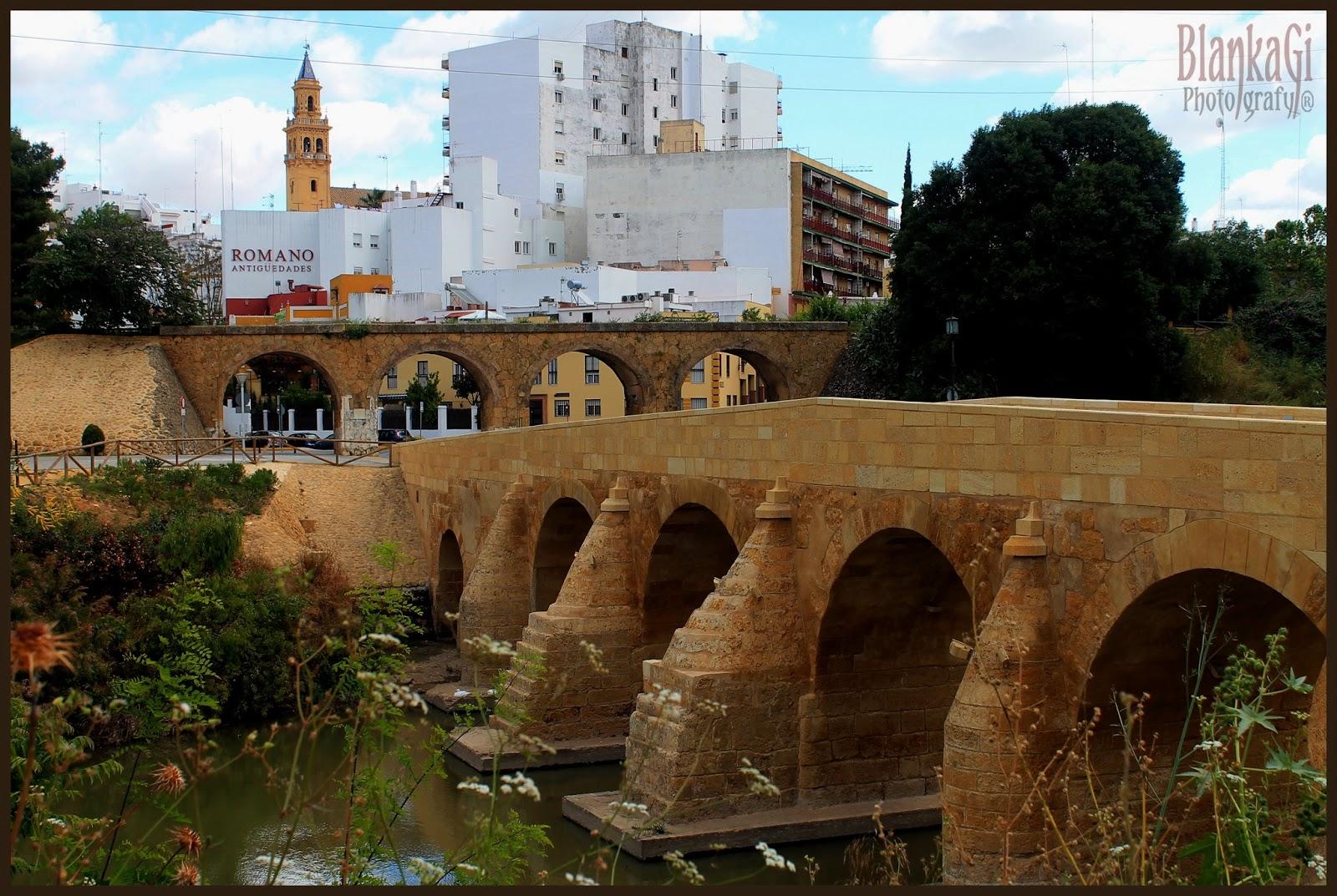 Opiniones de puente de carlos iii alcala de guadaira - Comisaria alcala de guadaira ...