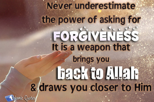 Islamic quotes and more islamic quotes on forgiveness