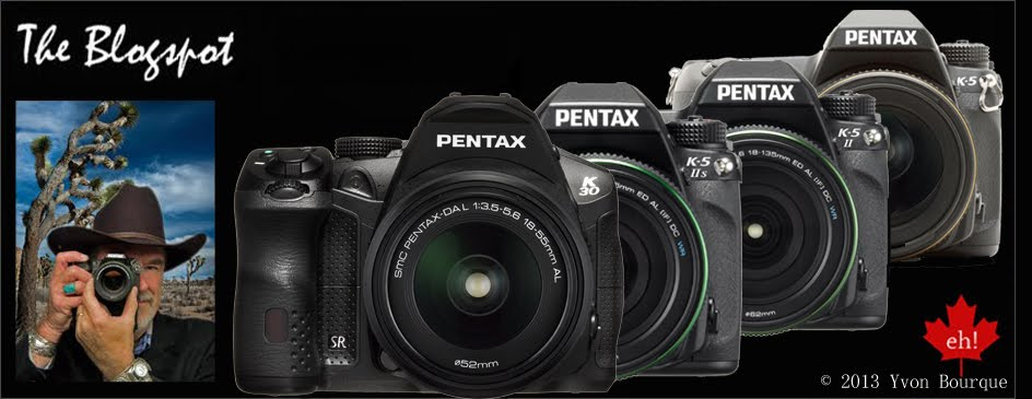 PENTAX DSLRs
