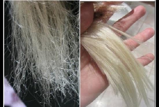 Lhuile de ricin sur les cheveux blancs