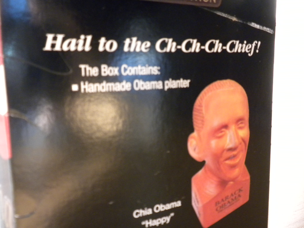 hail to the chief essay