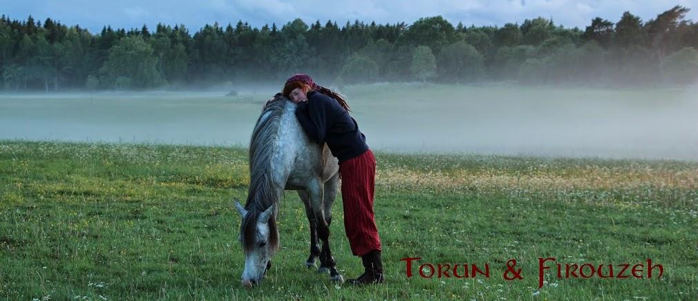 Torun och Firouzeh