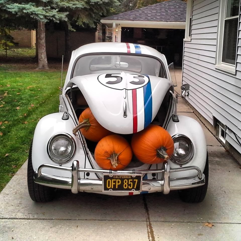 punch buggy on pinterest vw bugs volkswagen beetles and volkswagen. Black Bedroom Furniture Sets. Home Design Ideas