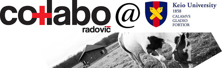 co+labo radovic barnhouse
