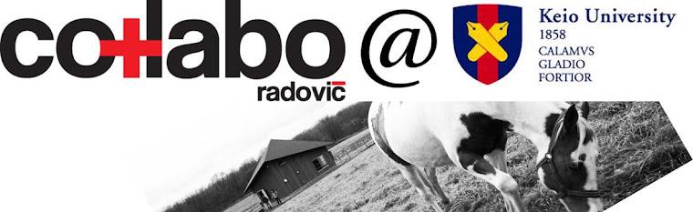 co+labo radovic barnhouse