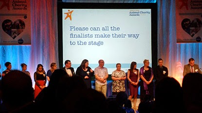 Petplan & ADCH Awards finalists