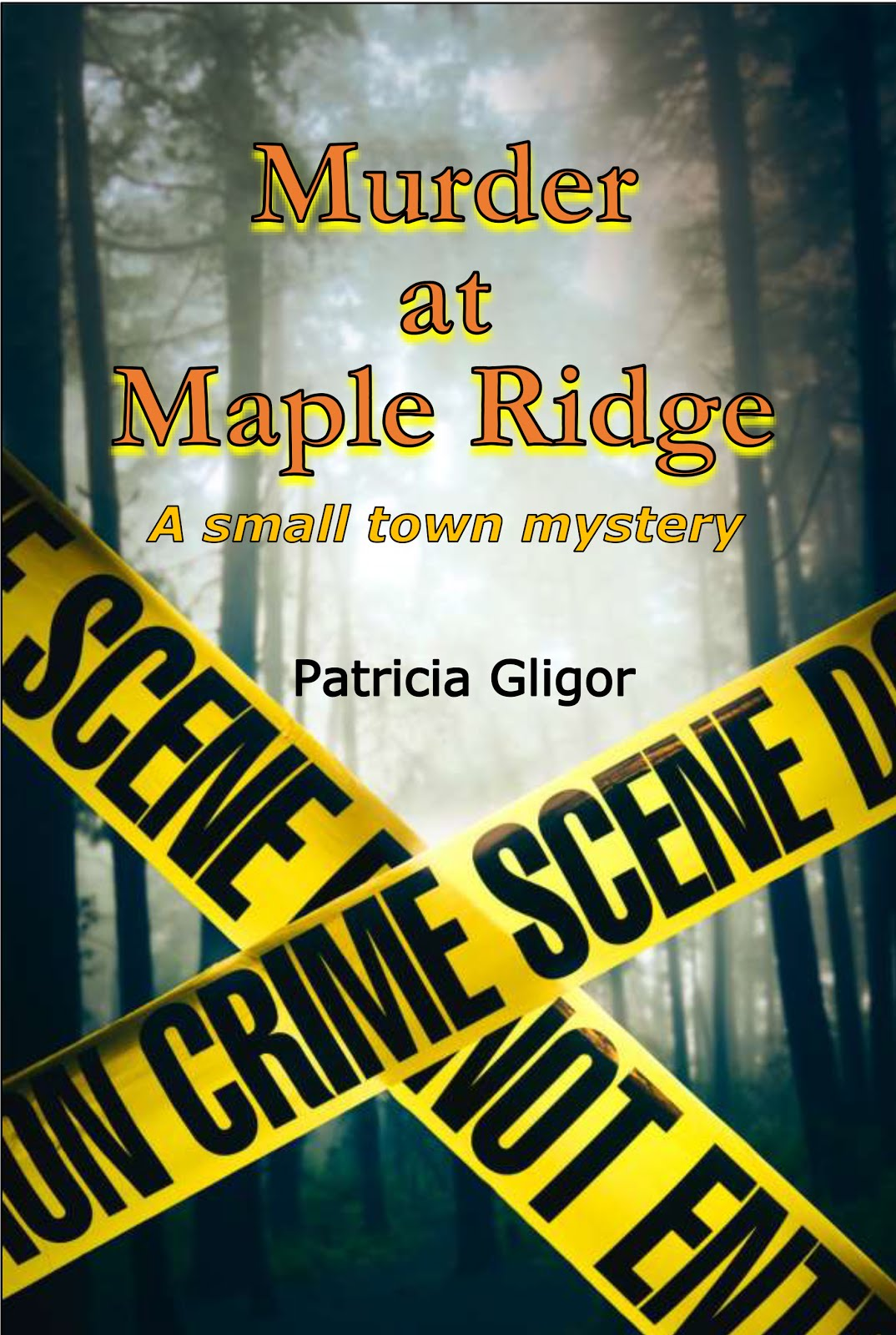 The second Small Town Mystery