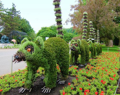 My owl barn montreal botanical garden mosaiculture for Au jardin les amis singapore botanic gardens