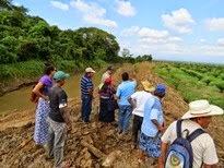 Guatemala: Comunidades de La Blanca atrapadas entre banano y palma