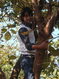 Shaheer Sheikh on tree