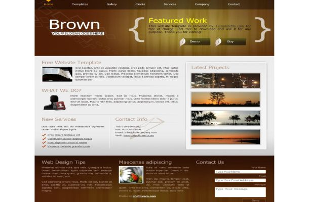 Business Portfolio Brown CSS HTML Website Template