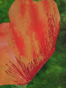 2012 Thread Magic Garden: Create Enchanted Quilts with Thread Ellen Anne Eddy