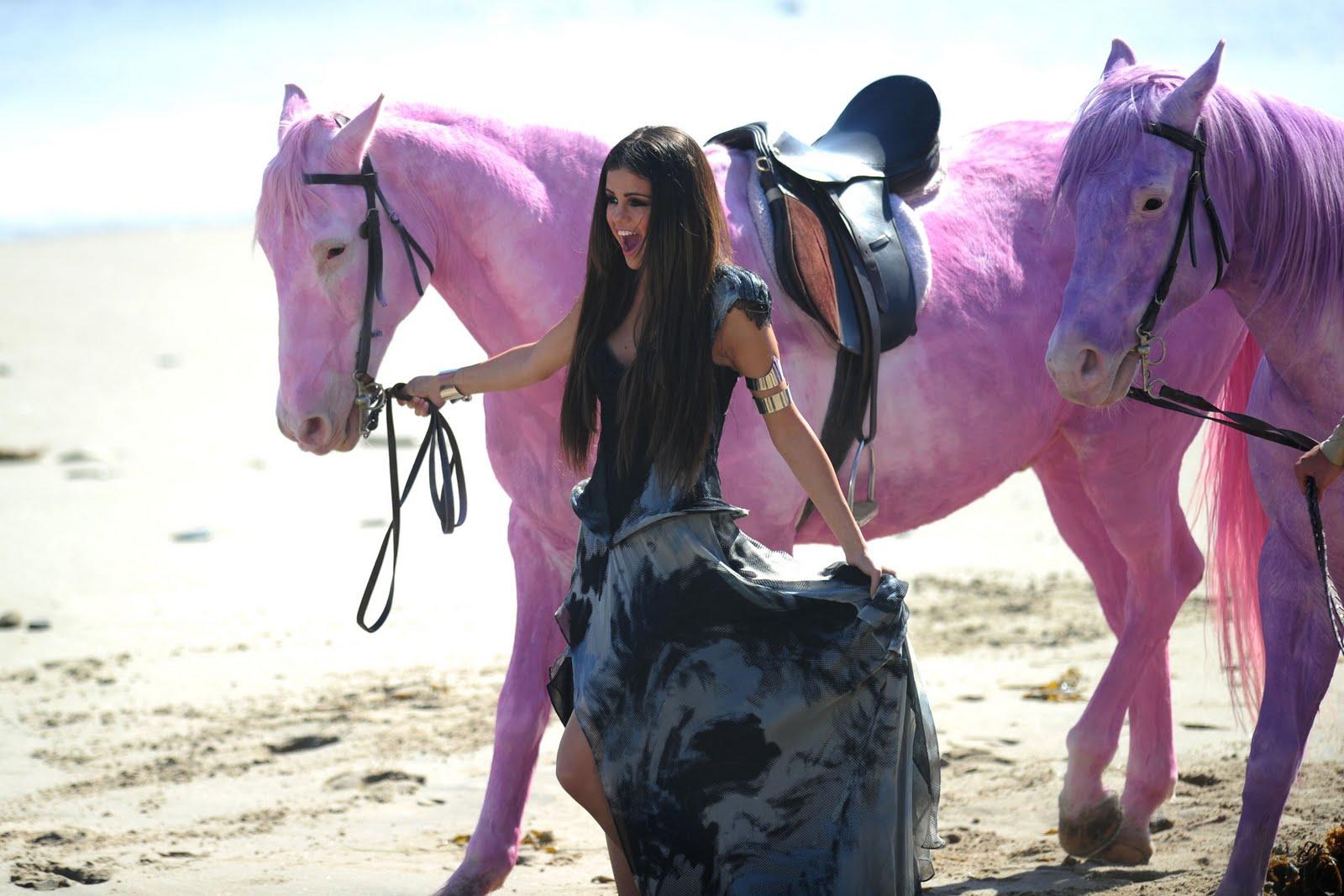 ♥ LetsGetGoddess: Pink critica a Selena Gómez por colorear caballos ...