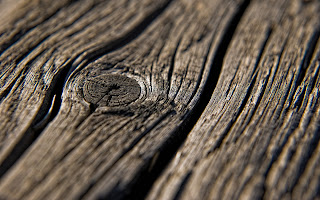 Macro Wood Texture HD Wallpaper