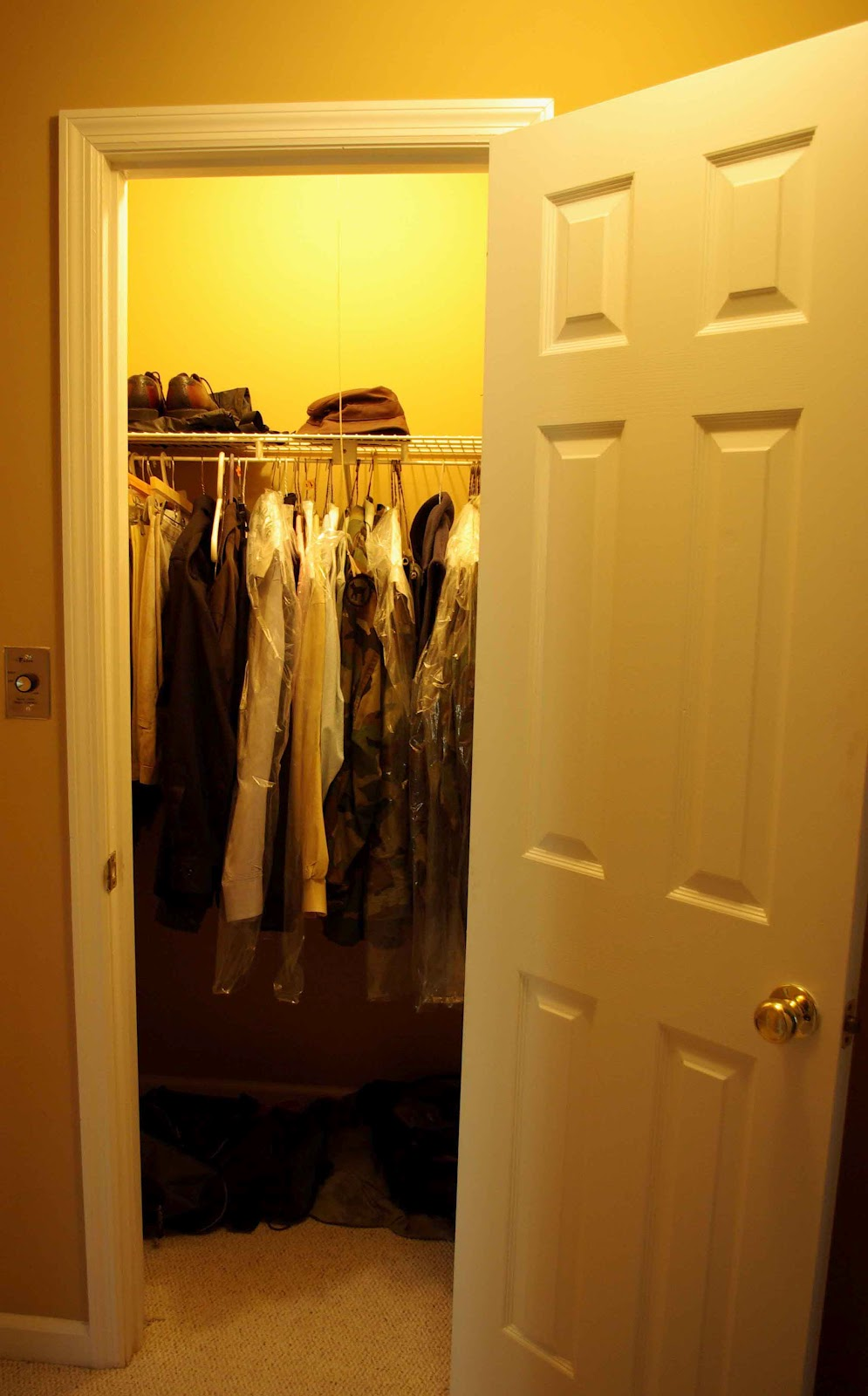 Busy Bee Organizing 7 Closets In 5 Hours