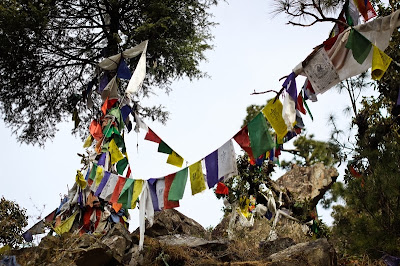Strings of prayer flags, McLeod Ganj in Dharamsala