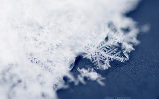 Winter Stars HD Wallpaper