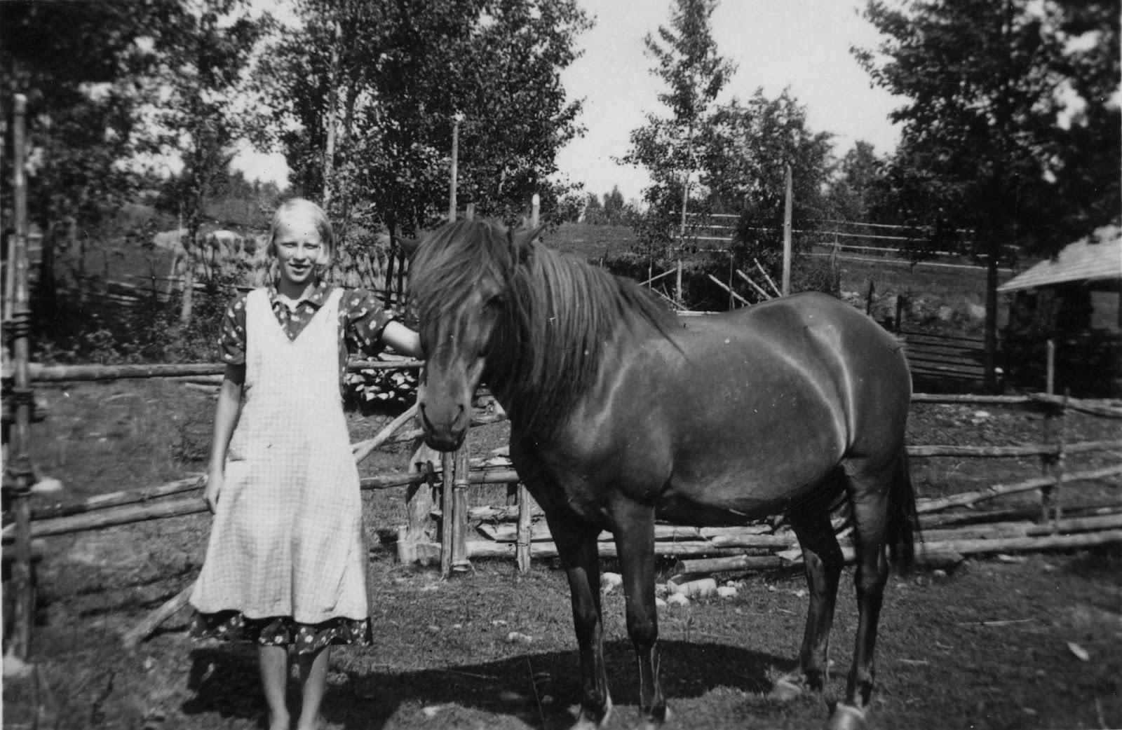 KORPIKANSAN KERTOMUS: Maailman paras hevonen