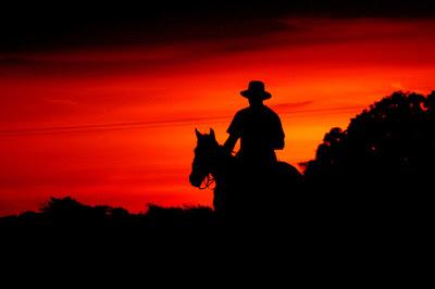 Llanero montando a caballo al atardecer en el Hato la Fe, Corozopando, Venezuela