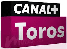 PROGRAMACIÓN DIARIA DE CANAL + TOROS