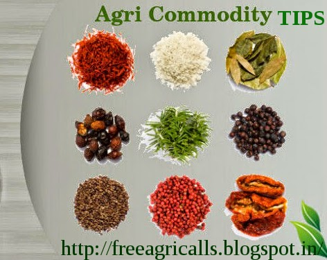 free agri calls, agri commdity tips, Turmeric Tips ,Chana Tips ,Dhaniya Tips , Soyabean Tips , Agri Fututre Tips