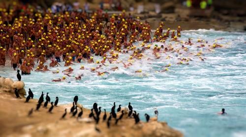 Competencia de natacion La Joya Roughwater Swim (Gatorman)