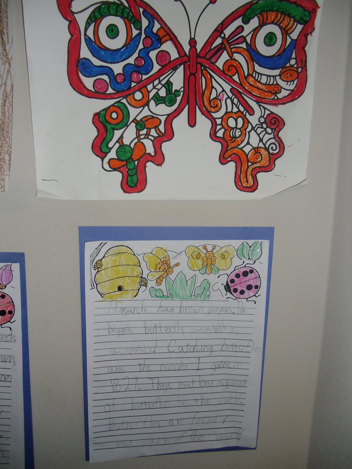 PATTIES CLASSROOM Insect Reports
