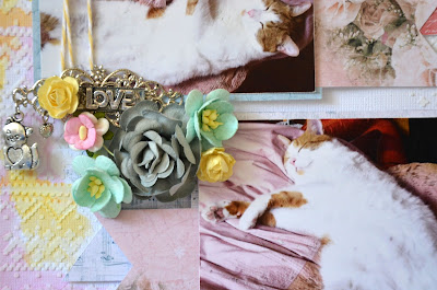 Scrapbooking Cats Layouts