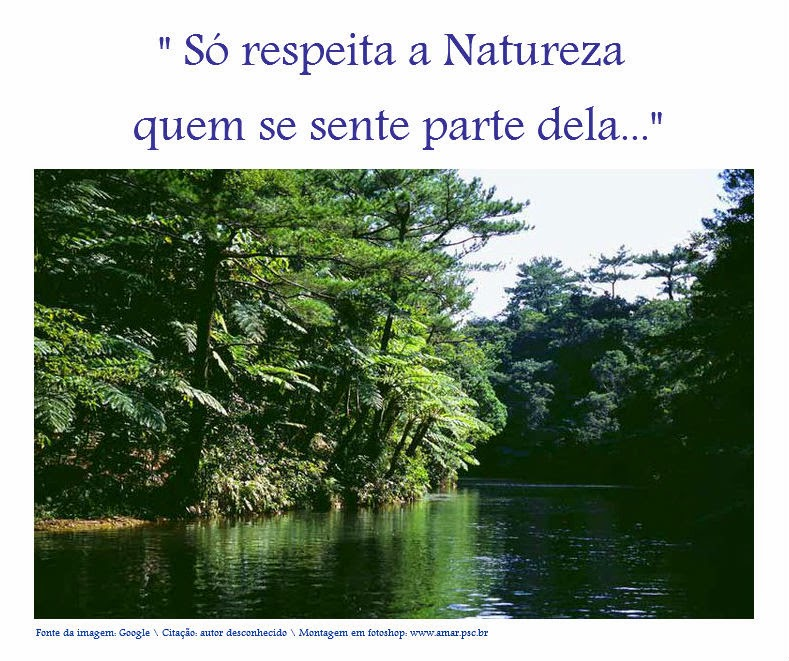 Respeito à Natureza...