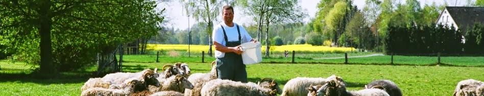 Schäferei - Schafwolle, Gefilztes u.v.m.