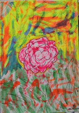 Rosa 27-11-91