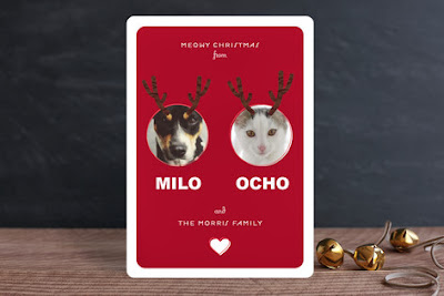 Minted Pet Holiday Card