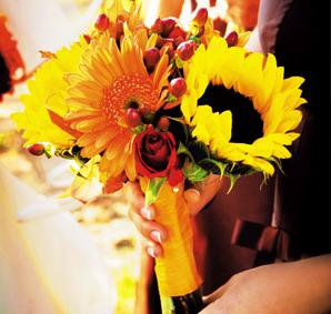 Fall Gerbera Daisy Bouquet WAM: Wedding - ...