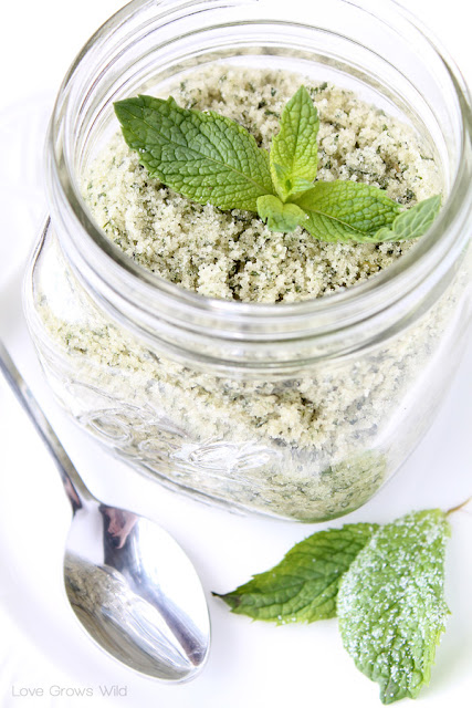 Mint Sugar is perfect to sprinkle on fresh fruit, rim cocktail glasses, or stir into tea or lemonade! Get the recipe at LoveGrowsWild.com