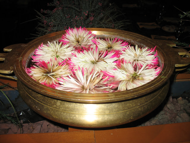 Chrysanthemums floating in water
