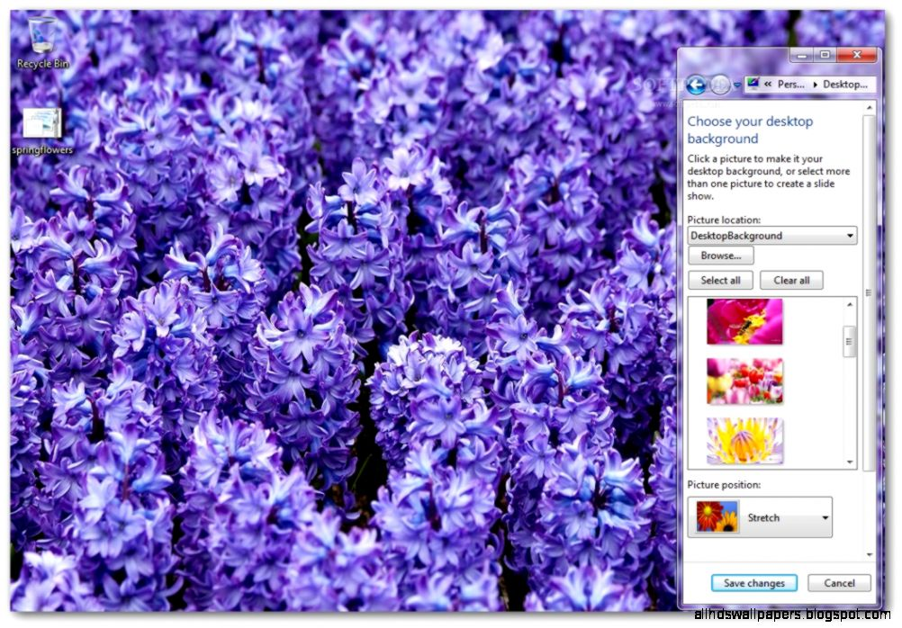 Spring Flowers Windows 7 Theme Download