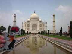 Taj Mahal, una meravella.