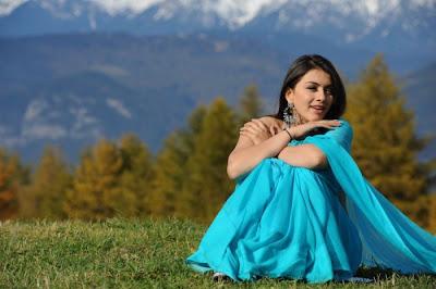 hansika motwani saree glamour  images