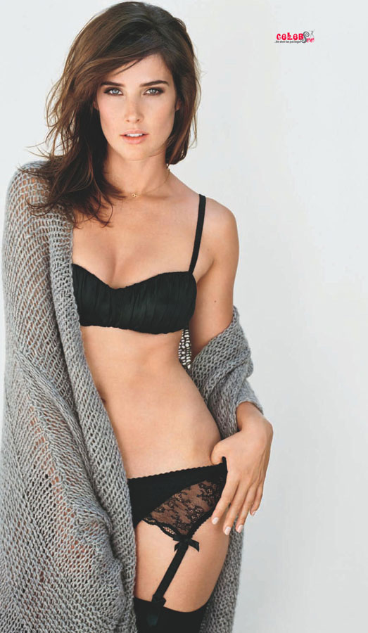 Cobie Smulders Hot Photo Hollywood Celebsee
