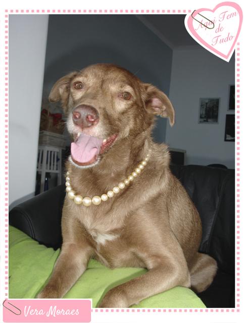Cachorra Princesa