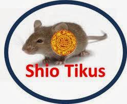 shio ular 2014 kelahiran tahun 1905 1917 1929 1941 1953