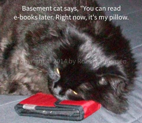 Basement Cat using e-book reader as a pillow, picture by Robert Sorensen © 2014