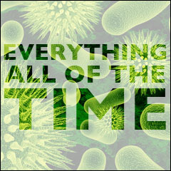 Everything All Of The Time: The Meaning of Life:  Chapter 2: The Evolution of All Things; The Eternal Conflict for Equilibrium; and the Definition of God v2.0