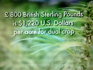 $1220 per acre from Dual Hemp Crop-Bringing It Home Movie